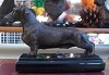 Dachshund Wire Coated Standing on Marble Base (4