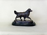 Golden Retriever Moving on Marble Base (4